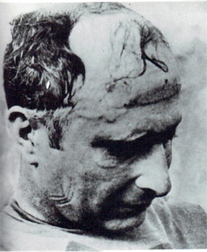 fangio3.png