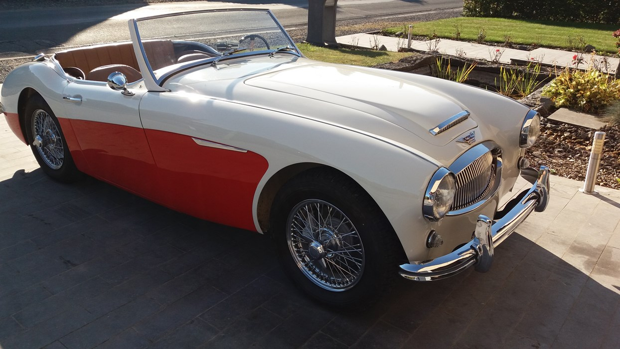 a vendre austin healey 3000 car for sale classic car passion. Black Bedroom Furniture Sets. Home Design Ideas